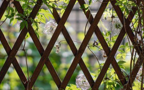Płoty siatki w ogrodzie