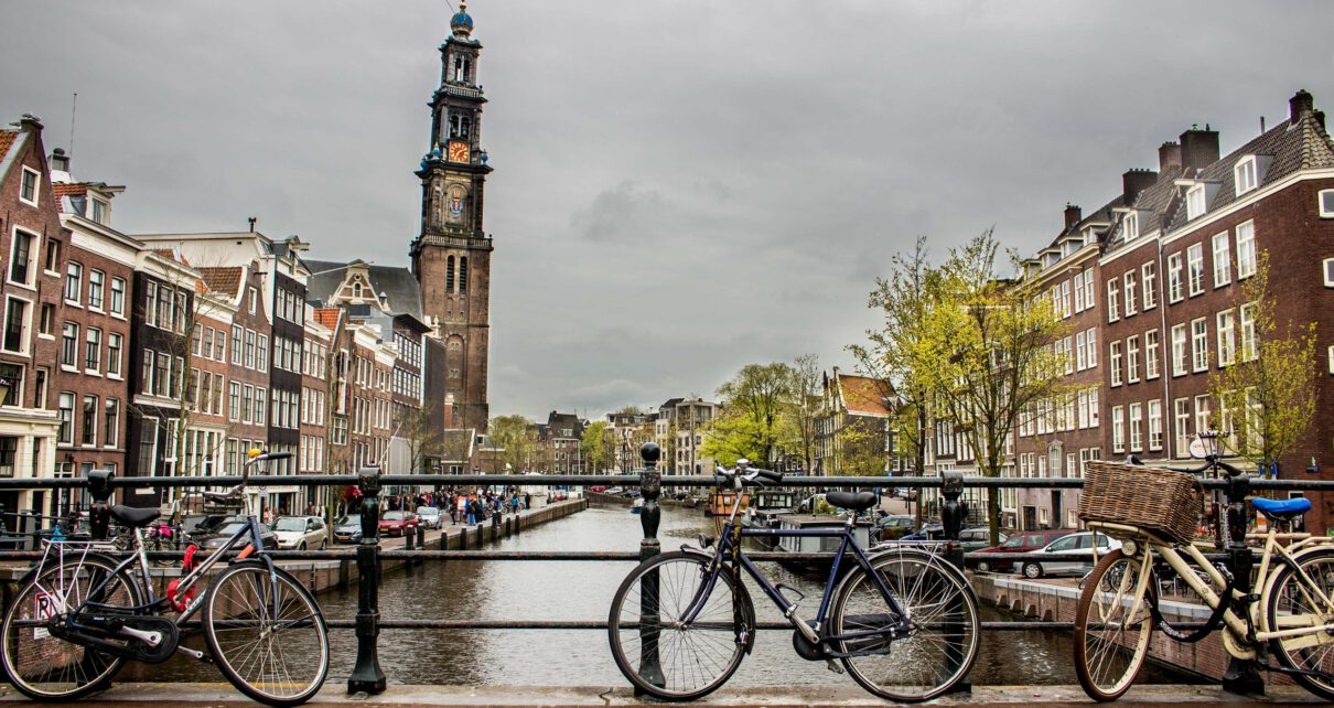 Holandia studia