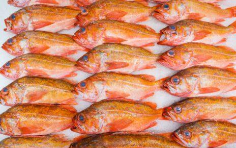 Ryby z kwasami omega.
