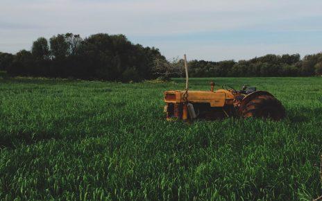 Traktor w polu
