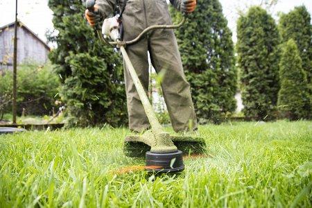 Koszenie trawnika kosą spalinowa.